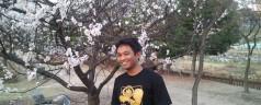 Spring, Cherry Blossom and L'Arc~en~Ciel